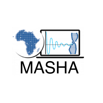 MASHA: Modelling and Simulation Hub Africa